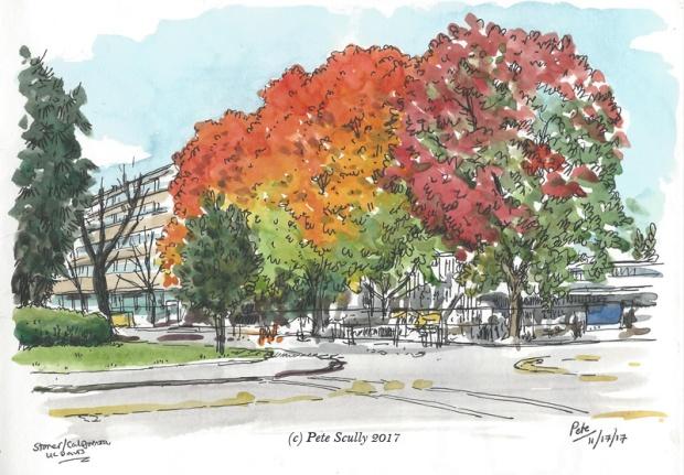 Autumnal Colours Hutchison UCD sm
