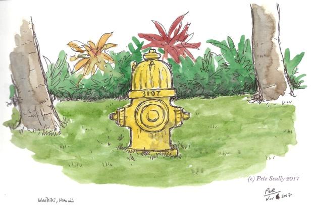 Waikiki hydrant sm