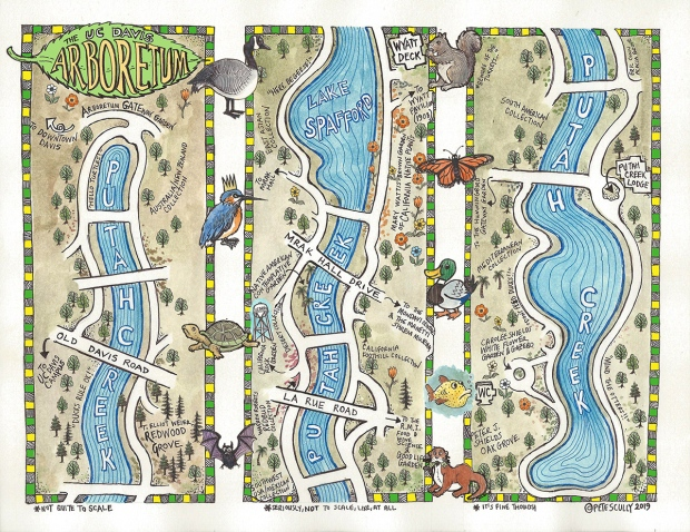 Arboretum map drawn by Pete Scully